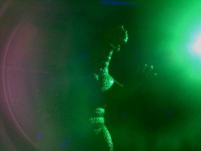2012-12-10 Snake Lair Godzilla