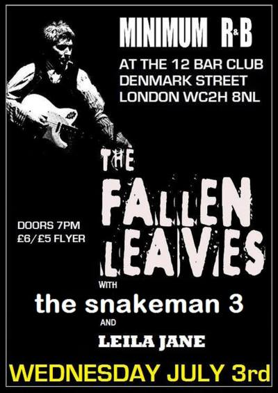2013-07-03 Snakeman 3 Fallen Leaves London